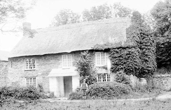 Charles Mannell is standing outside the cottage. By 1996 the cottage was called 'Ralph's Cottage'. At this time, the Trenowth Estate was owned by Sir Robert Harvey, former President of the Royal Institution of Cornwall (1901-1903). Photographer