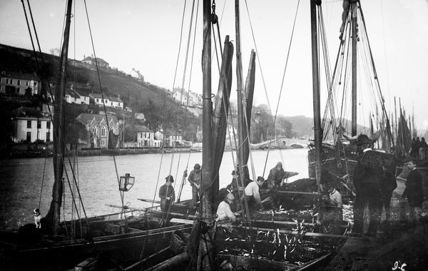 A group of fishing boats at East Looe quay looking upriver to the Looe bridge on the West Looe side. Photographer: Surgeon Captain John Campbell