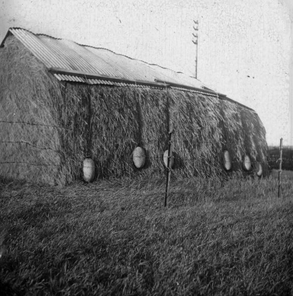 Haystack covered with corrugated iron sheets which are weighed down with suspended large granite boulders of the Druids egg type. Photographer: Unknown