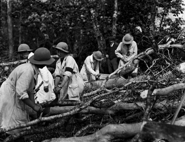 Five members of the Women's Land Army cutting felled timber. One woman wears a dark armband on her right arm. A farm worker stands in the background. Photographer: Arthur William Jordan