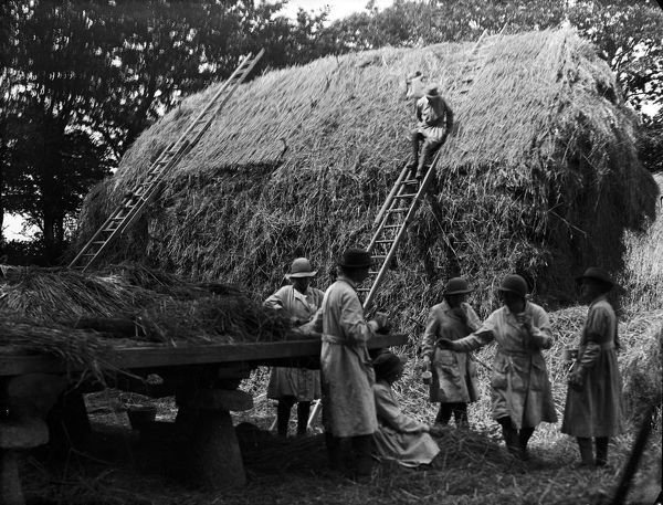 A group of the Women's Land Army pictured after building a hay rick, probably at Tregavethan Farm, a Women's Land Army training centre