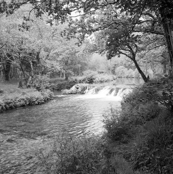 A view of the River Lynher near Clapper Bridge with a small waterfall. The river is about 21 miles long, rises on Bodmin Moor and flows into the Tamar Estuary near Plymouth. Photographer: Charles Woolf