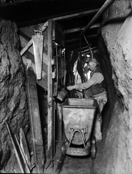 Mill at the 130 level. Miner guiding ore into trolley from above. Carpenter's saw hanging from the side of shute framework. Pieces of loose timber standing nearby. In 1897 part of the property was transferred to Camborne School of Mines as the