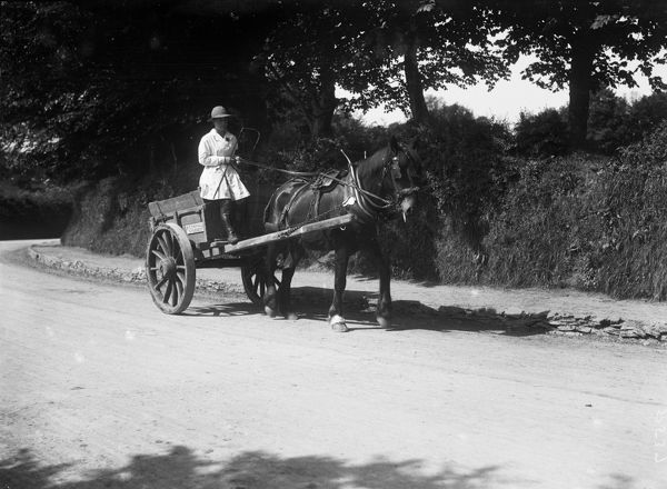 A horse and cart belonging to A.C. Polwhele of Polwhele House, driven by a member of the Women's Land Army, during World War One. Photographer: Arthur William Jordan