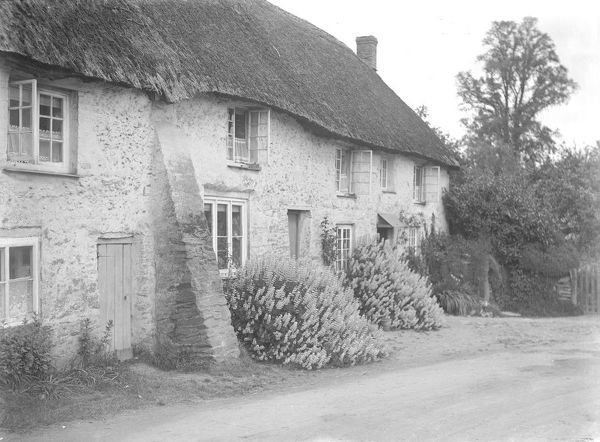 Thatched cottages at Tresillian. Photographer: Arthur William Jordan