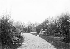 Boscawen Park, Truro, Cornwall. Early 1900s