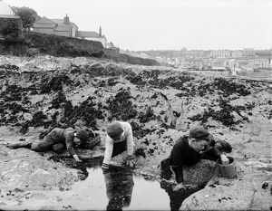 Boys at a rock pool, Cornwall. 1901