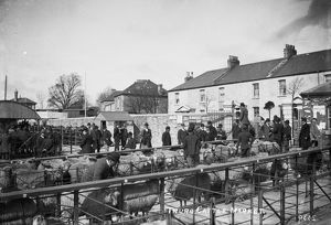 Cattle Market, Castle Hill, Truro, Cornwall. About 1910
