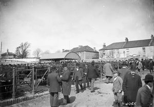 Cattle Market, Castle Hill, Truro, Cornwall. About 1920