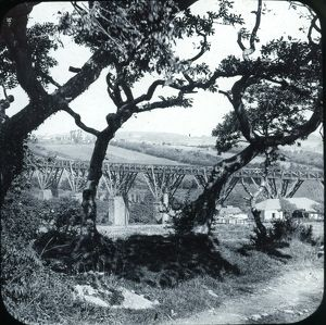 Collegewood viaduct, Penryn, Cornwall. Early 1900s