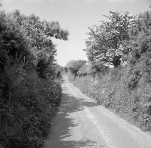 Country lane near Relubbus, St Hilary, Cornwall. 1969