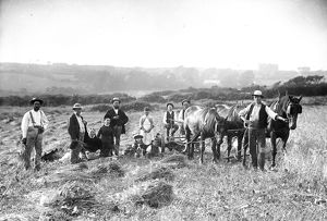 Family group during harvest, Cornwall. Late 1800s