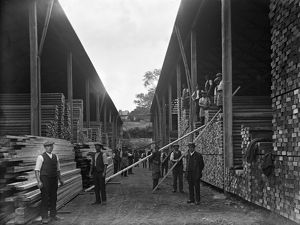 Harvey's timber yard, Truro, Cornwall. 1923