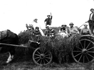 Hay waggon, probably Padstow, Cornwall. Early 1900s