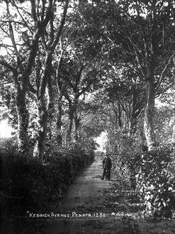 Kernick Avenue, Penryn, Cornwall. Around 1904