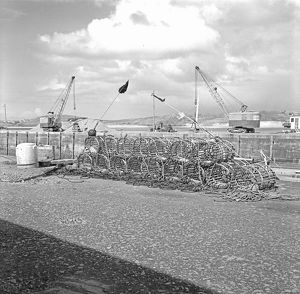 Lobster pots on Fish Quay, Padstow Harbour, Cornwall. 1968