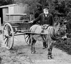 Man with donkey cart, Truro, Cornwall. Around 1900