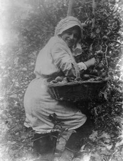 Member of the First World War Women's Land Army. Cornwall. Autumn 1917