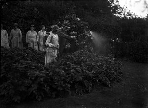 Members of the First World War Women's Land Army pictured outside. Tregavethan Farm