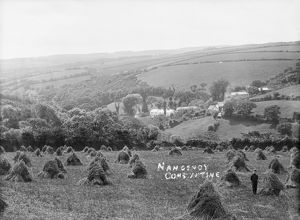 Nancemoy, Constantine, Cornwall. Early 1900s