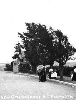 The New Gyllyngdune Road, Falmouth, Cornwall. Early 1900s