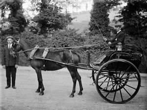 Pony and trap, Tremorvah Lodge, Cornwall. Early 1900s
