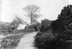 Thatched Cornish cottage near Hugus, Kea, Cornwall. Early 1900s