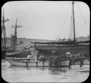Unloading fish from a boat into a horse and cart, St Ives harbour, Cornwall. Early 1900s