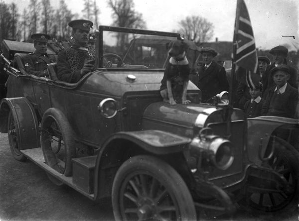 Officers in a motor vehicle with driver (one officer possibly Brigadier Ward). On the bonnet of the car is the mascot Bob the dog. Photographer: Arthur William Jordan