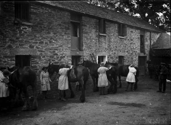 A group of Women's Land Army members grooming horses under instruction. Probably at Tregavethan Farm, a Women's Land Army training centre. Photographer: Arthur William Jordan