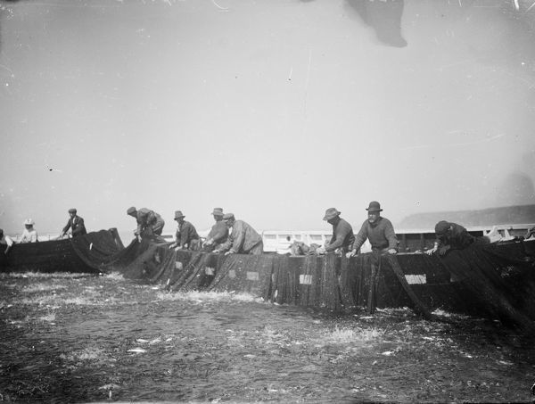The fishermen are tucking the pilchard seine nets. Photographer: Unknown