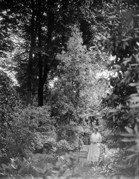 A view of a lady standing amongst the trees in the garden of Trewithen House. The estate was purchased and developed by Philip Hawkins in 1715 and has remained in the ownership of the family since then. The house is now Grade I listed. Photographer