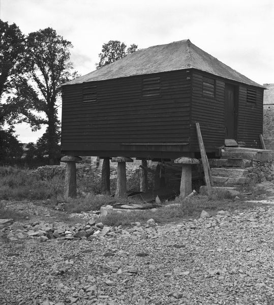 Wooden granary building on staddle stones, Shillingham Manor Farm, St Stephens by Saltash, Cornwall. 1961