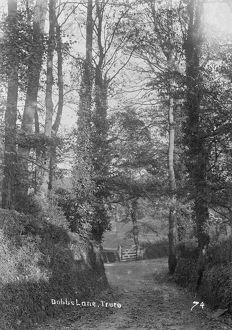 places/truro/dobbs lane truro cornwall early 1900s