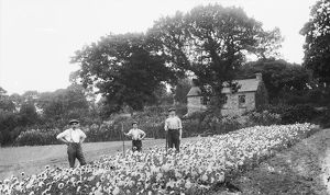 Gardeners, Cornwall. Early 1900s