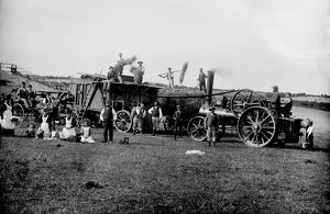 Harvesting at Trewhella Farm, St Hilary, Cornwall. Around 1900-1910