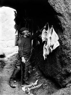 Bill Harvey hanging skate, Porthgwarra, Cornwall. 1903