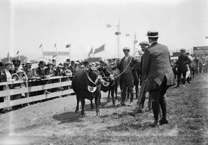 Royal Cornwall Show, Cornwall. Early 1900s