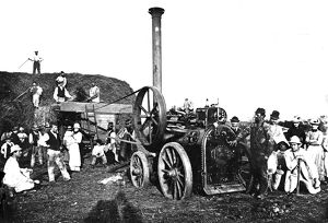 Threshing in Cornwall. Around 1880s or 1890s