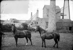 Tregurtha Downs Mine, St Hilary, Cornwall. 1890